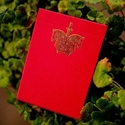 Ellusionist Knights Red Playing Cards Limited Edition (RED) Deck by Chris Ramsay