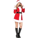 Merry Ms. Santa Claus Adult Costume - Small/Medium